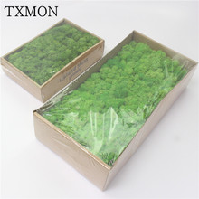 High quality Simulation green plant immortal fake flower Moss grass home living room decorative wall DIY flower mini accessories