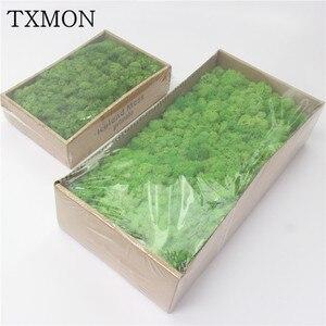 Image 1 - 高品質シミュレーション緑色植物不滅偽花苔草装飾壁diyフラワーミニアクセサリー
