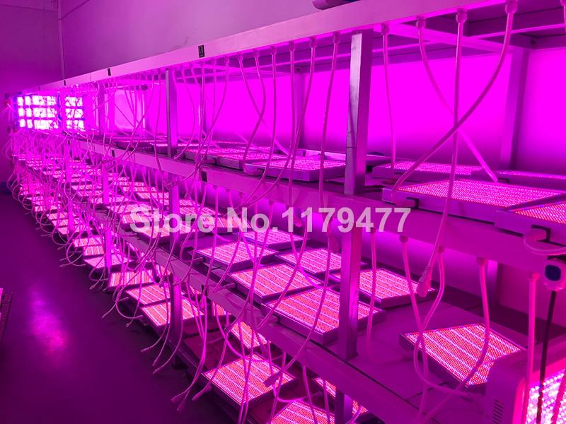 Full Spectrum LED Plant Grow Lights 8