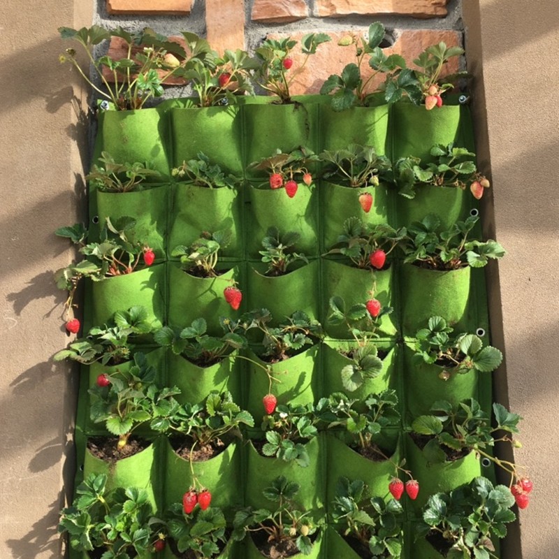 Vertical Wall Planters Outdoor Part - 49: Outdoor 18 Pocket Indoor Balcony Herb Vertical Garden Wall Hanging Planter  Bag Felt Plants Bags