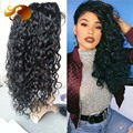 Best Loose Curly Brazilian Virgin Hair Lace Wig Free Part Full lace Human Hair Wigs Glueless Lace Front Wigs For Black Women
