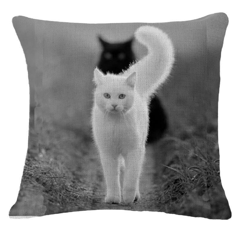 Белые картинки с кошками и надписями, для детей