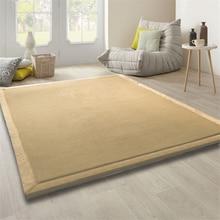 Honlaker 200x300cm Coral Velvet Thickened Large Carpet Living Room Children Crawling Play Rugs Kids Bedroom
