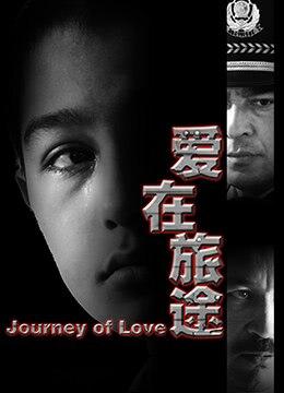 《爱在旅途》2014年中国大陆剧情,犯罪电影在线观看