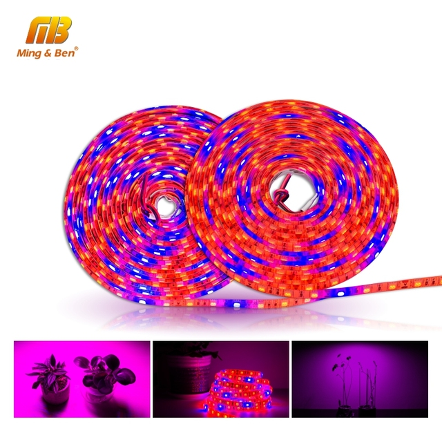 LED Grow Strip S5050 3/4/5 Red 1 Blue 5M Full Spectrum IP65 Phyto Light for Greenhouse Hydroponic Plant Growing DC 12V Fitolamp