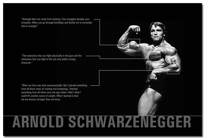 Schwarzenegger Arnold Posters High Quality