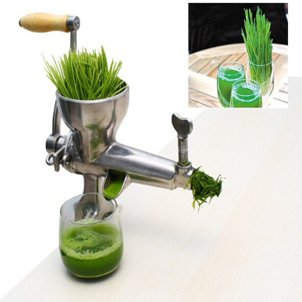 Stainless steel manual wheat grass fruit vegetable lemon oranges juicer juice extractor juicing machine glantop 2l smoothie blender fruit juice mixer juicer high performance pro commercial glthsg2029