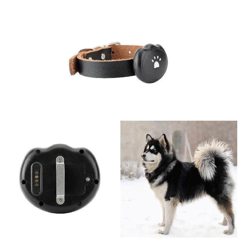 2G Dog GPS Tracking Pet Finder Collar Safety Location Attachment for Pets Dogs Tracking WXV Sale