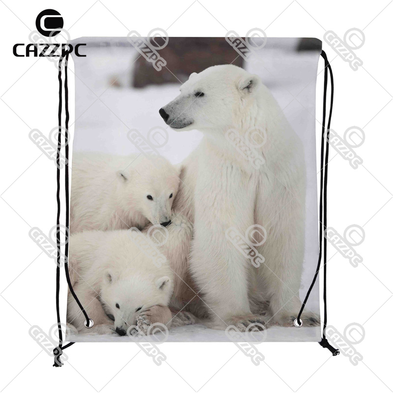 Cute Polar Bear in White Ice Field Print Custom individual Nylon Fabric Drawstring Shoes Storage Dust Bag Pack of 4