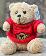 25cm Cute Stuffed & Plush Toys Stuffed Animals Teddy with Sweater Soft Plush Teddy Bear Gift for Valentine Day Birthday