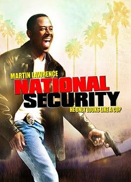 《国家保安》2003年美国动作,喜剧,犯罪电影在线观看