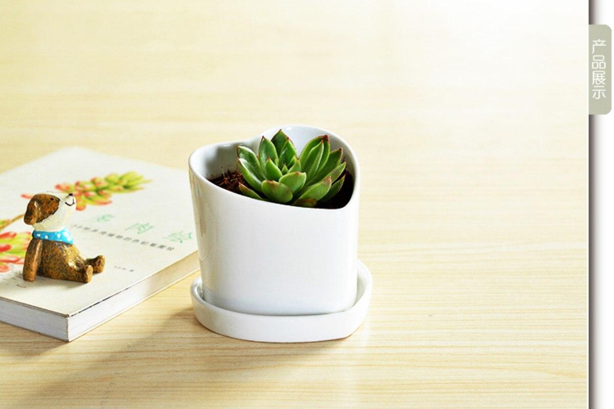 Free Shipping Meaty Plant Pot Flowers White Ceramic Simple Love Hearts Obliq