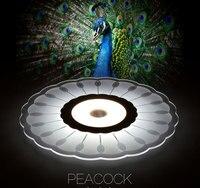 Творческий Тонкий цветочный форме потолочный светильник столовая Павлин лампы