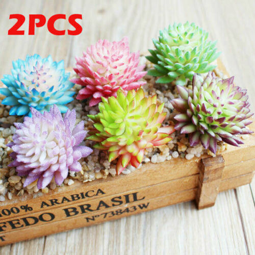 2PCS NEW Plastic Artificial Succulents Plant Flocking Fake Floral Garden Home Office Decoration Fake Plants(China)