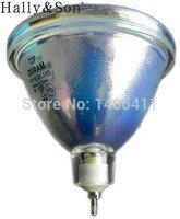 Free Shipping Brand New Original Bare Lamp Bulb P VIP 100 120 1 3 P23 OEM