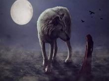 DIY wolf diamond painting wolf beauty animals dimaond embroidery full wolf beauty diamond painting mosaic full round drill wolf howlin wolf howlin wolf killing floor blues essentials