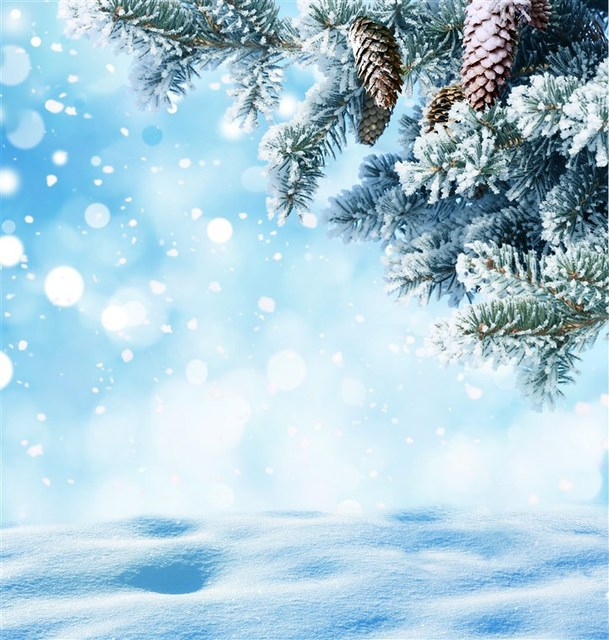 Christmas Wallpaper Aesthetic: LIFE MAGIC BOX Photography Backdrops Photo Background