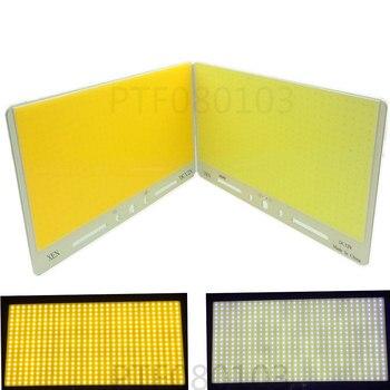 2 pièces 12 V 680 W canne à pêche COB lumière LED Source lampe de Camping en plein air voiture lumières DC12-14V blanc pur/chaud white3000/6000 K