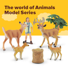 Farm Animal Deer Figurines Playsets Toys Hand-Draw Simulation Animals Model Figures Educational Toy Set for Baby Kids Home Deco farm animal model toy simulation horse and sheep ducks and geese set kids educational toy for children gift