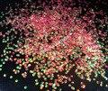 YLP13 #-2 MM Escala de Pescados de Colores Iridiscentes Shifting Copos para DIY Del Clavo Del Brillo Del Hexágono Del Brillo Del Arte Del Arte Regalos decoración