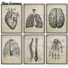 Pósteres Vintage de anatomía médica de la anatomía humana, arte en lienzo, impresión médica, clínica, cuadros de decoración de pared, pintura en lienzo