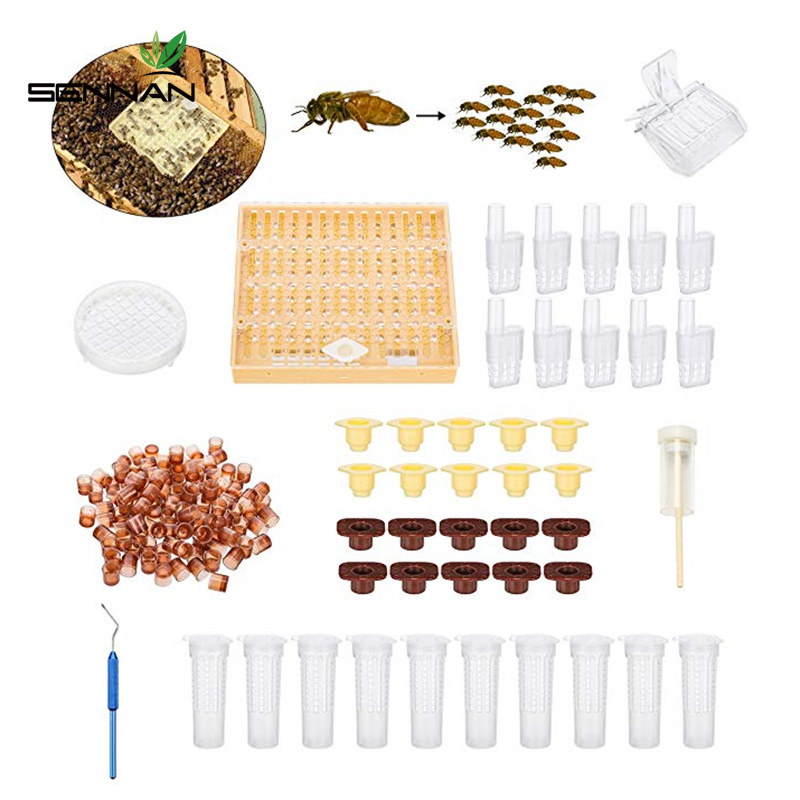 Complete Bee Queen Rearing Cup Kit System Bee Beekeeping Catcher Box Catcher Cage Bee Keeper Tools