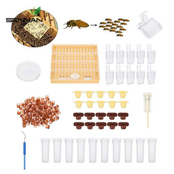 Complete Bee Queen Rearing Cup Kit System, Bee Beekeeping Catcher Box Catcher Cage Bee Keeper Tools Apiculture Box Set