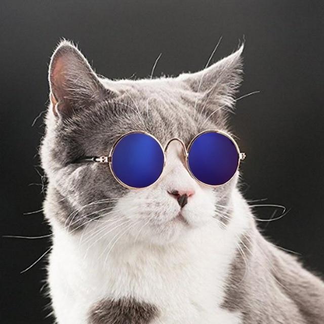 Hoomall Массажная расческа котенка очки собачьи очки товары для домашних животных для маленькой собаки кошачий глаз-одежда очки для собак фото Товары для домашних животных
