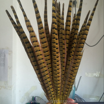 Wholesale 200 pcs beautiful yellow Pheasant Feather 16-18 inches 40-45 cm free shipping