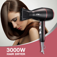 Guowei GW 6523 3000W Hair Dryer 2 Speed 3 Heat Setting Hanging Loop Airflow Concentrator Nozzle Fast Straight Hot Air Styler