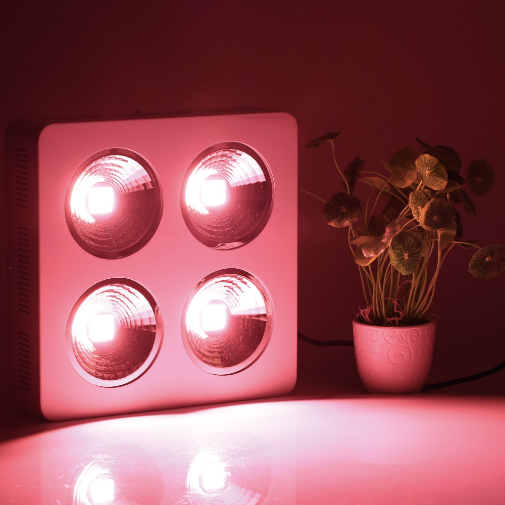 Commercial Greenhouse Led Grow Lights: 4 Holes Cree COB Full Spectrum 800W Led Grow Lighting Lamp