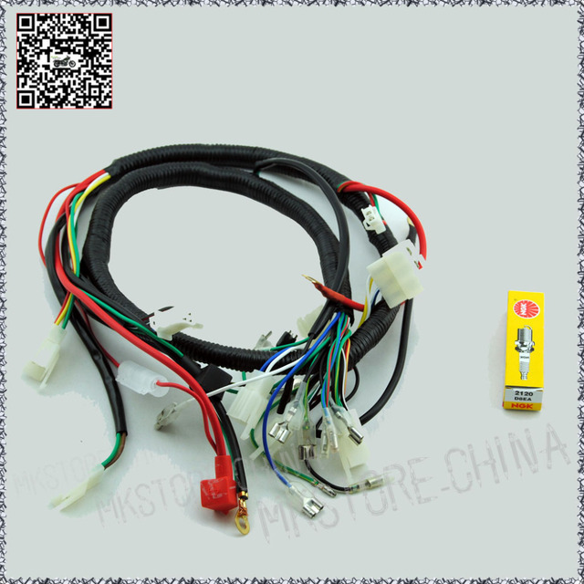 250CC+NGK SPARK PLUG QUAD WIRING HARNESS 200 250cc Chinese Electric