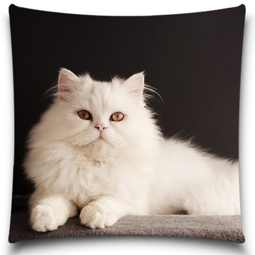 2016 New Beautiful Pillow Covers Lovely Cats Throw Pillows Case Vintage Home Decorative 5 size