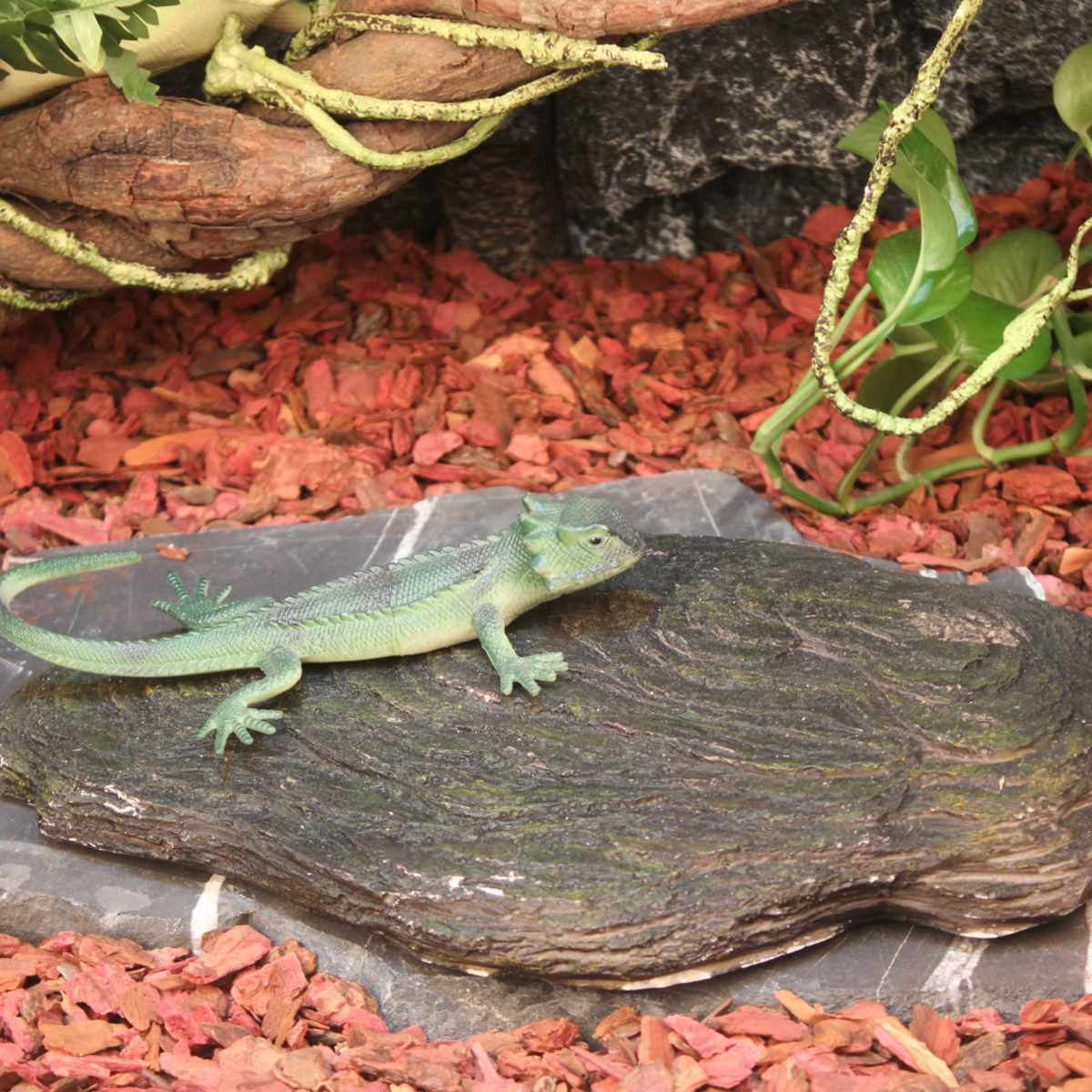 Reptil 3d Batu Panas Resin 6 W 12 24 Simulasi Latar Belakang Weber Keranjang Ikan Besar Pelat Papan Tangki 1612 Cm 1815 2817 Aquarium Suhu Di Terrariums Dari Rumah