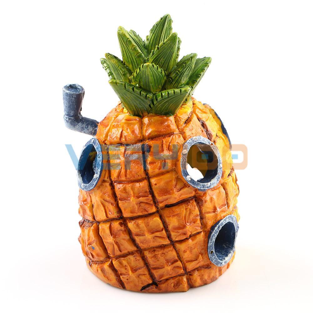 Evde büyüyen ananas