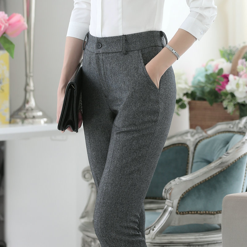 Plus Size 3XL Formal OL Styles Spring Winter Business Women Pants Office Work Wear Trendy Skinny Leggings Pants Trousers Capris