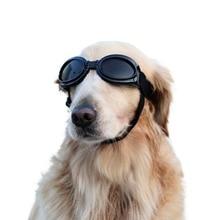 Nicrew New Attractive Pet Dog Sunglasses Multi-Color Fashionable Water