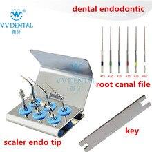 Skaler do wybielania zębów endo końcówki endodontyczne końcówki ultradźwiękowe plik kanału korzeniowego pasuje do dzięcioł EMS sprzęt