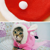 cute-rabbit-cat-costume-clothes-autumn-winter-clothes-for-cats-sweety-pet-hoodies-warm-velvet-cat-jacket-outfit-hoodie-for-dog