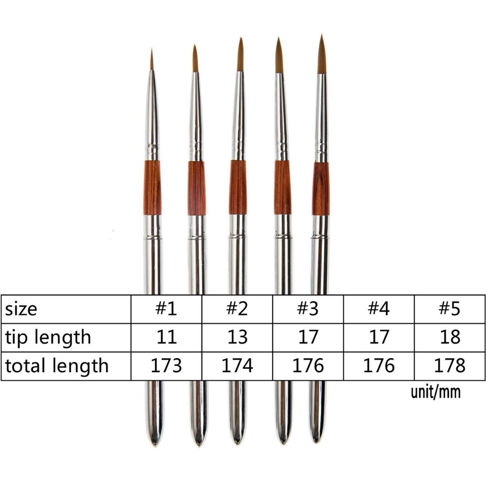 MEEDEN Travel Watercolor Acrylic Brush Set 5 Different Shape Round Pointed Tips Nylon Hair Portable Painting Brush Set