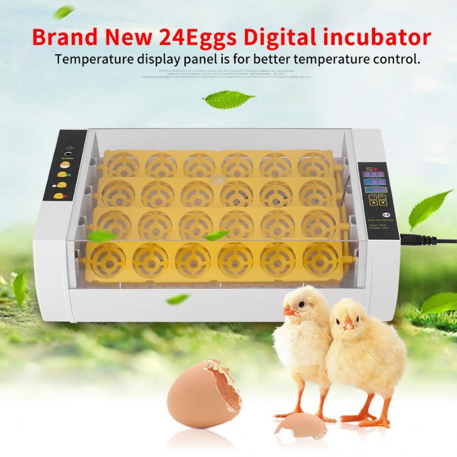 24 oeufs incubateur contrôle de température numérique automatique poulet poussin éclosoir Animal de ferme-in Mangeoires et abreuvoirs from Maison & Animalerie    2