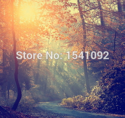 10x10ft Customize free shipping Thin vinyl cloth photography backdrop scenery computer Printing background for photo studio f172