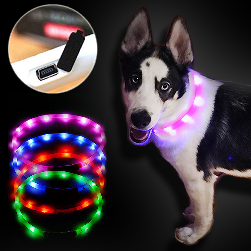 collar para mascotas con luz LED Collares para perros al aire libre USB con carga USB Collar para perros con gato Teddy Night Collar con luz intermitente Suministros para mascotas