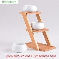 Modern Minimalist White Ceramic Flowerpot Succulent 3 Bonsai Planters Pot with 3 Tier Bamboo Shelf Home Garden Decor