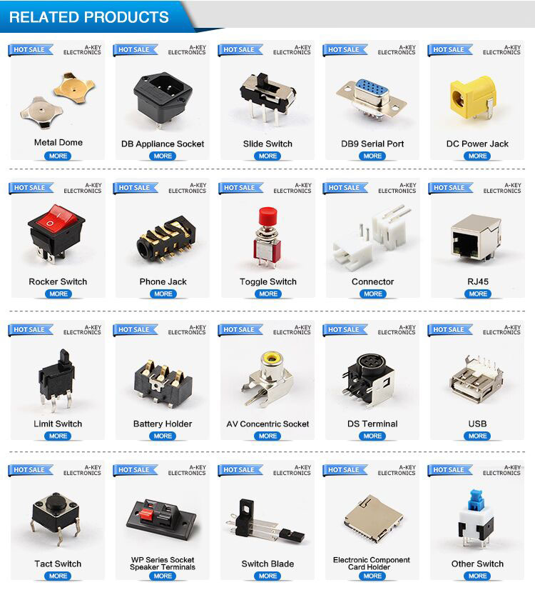 NO.1 Electric Power Tool Switch for Electric hand drill