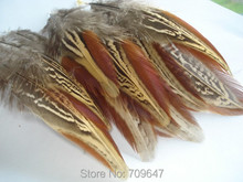 Whosale!2000PCS/LOT 4-7cm MARBELED Wing Feathers Red Burgundy Green Blue Ringneck Pheasant FREESHIPPING