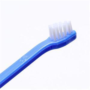 Dog Toothbrush  3