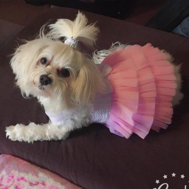 Bonitos vestidos para perro o mascota, ropa para perros y gatos pequeños, disfraz de verano para perro, vestido para cachorro, traje, falda de verano para perro, ropa 20