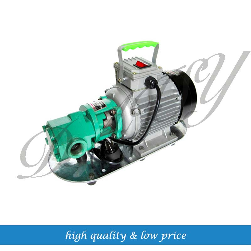100l/min 1.1Kw 220v 50hz Cast Iron Mini Gear Oil Pump/Portable Oil Pump/Self Priming Oil pump high efficiency gear mini oil pump cast iron 750w 220v 50hz