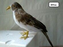 lifelike sparrow bird model polyethylene&furs simulation gray bird doll gift about 30cm xf0459 стоимость